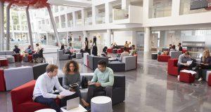 alphagamma 7 strategies to create an ideal work environment for Millennials entrepreneurship