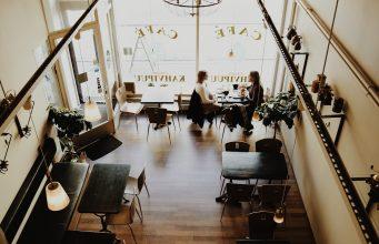 alphagamma startups overview june 2017 entrepreneurship