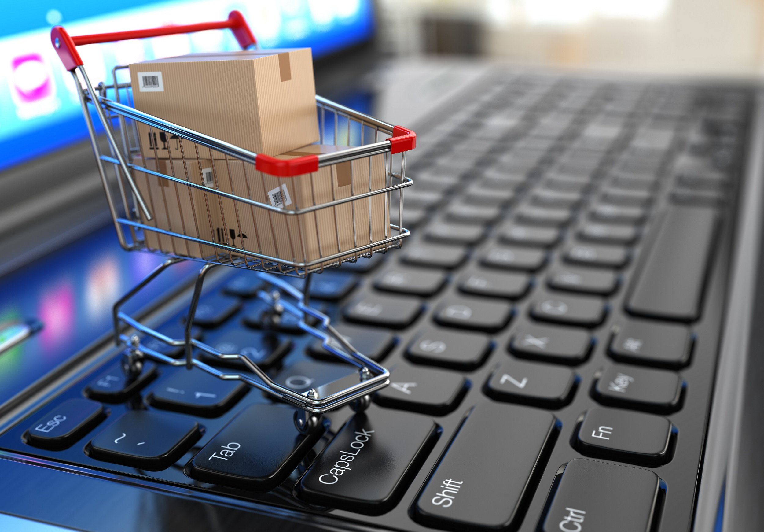 E-commerce Fulfillment - Serving the Needs of the Online Market